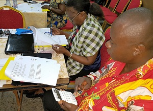 DRC Data Use Assessment Participants