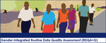 Gender-Integrated Routine Data Quality Assessment (RDQA+G) Tool