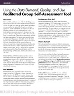 Using the Data Demand, Quality, and Use Facilitated Group Self-Assessment Tool