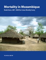 Mortality in Mozambique: Results from a 2007–2008 Post-Census Mortality Survey