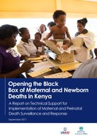 Opening the Black Box of Maternal and Newborn Deaths in Kenya: A Report on Technical Support for Implementation of Maternal and Perinatal Death Surveillance and Response